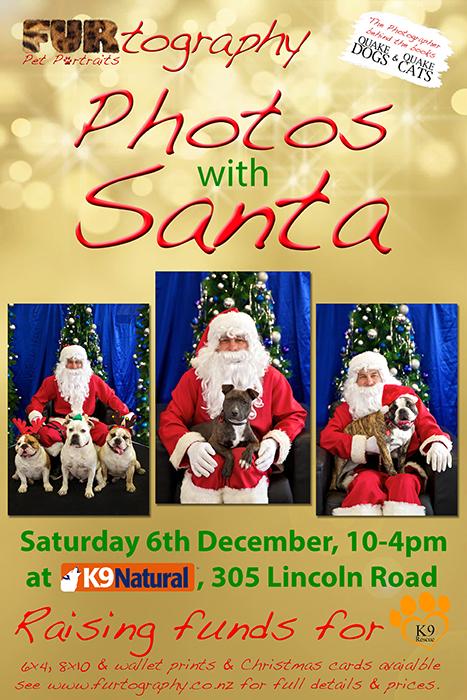 Santa Pics Promo PosterWEB