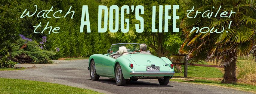Watch: A Dog's Life Trailer