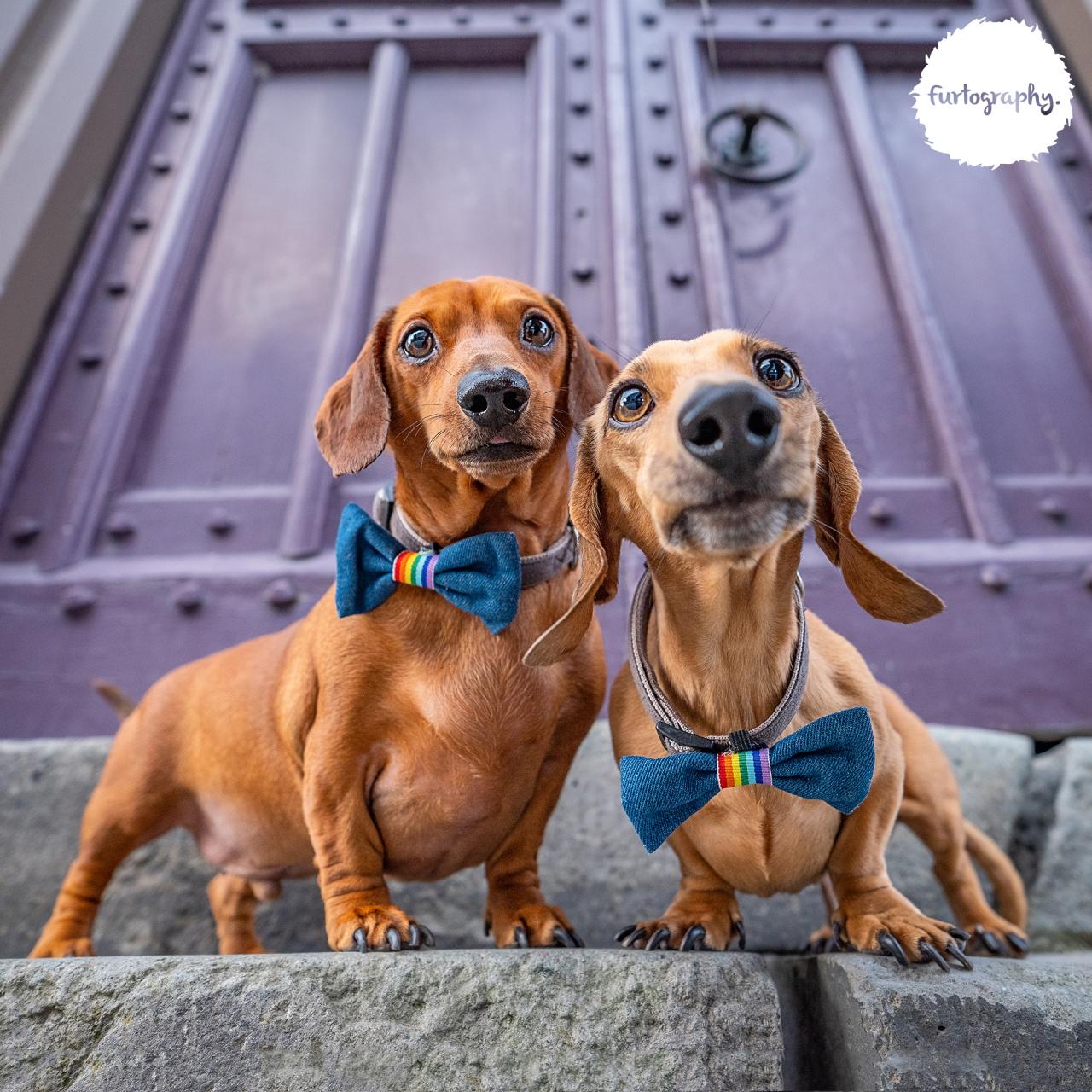 Ralph & Reggie