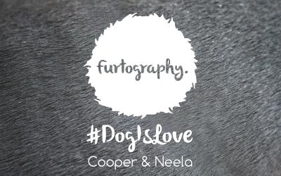 #DogIsLove – Cooper and Neela