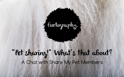 Pet Sharing! What's all that about? | Guest Blog with Share My Pet