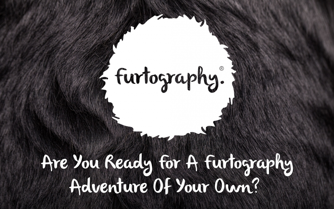 Are you ready for a Furtography adventure of your own?