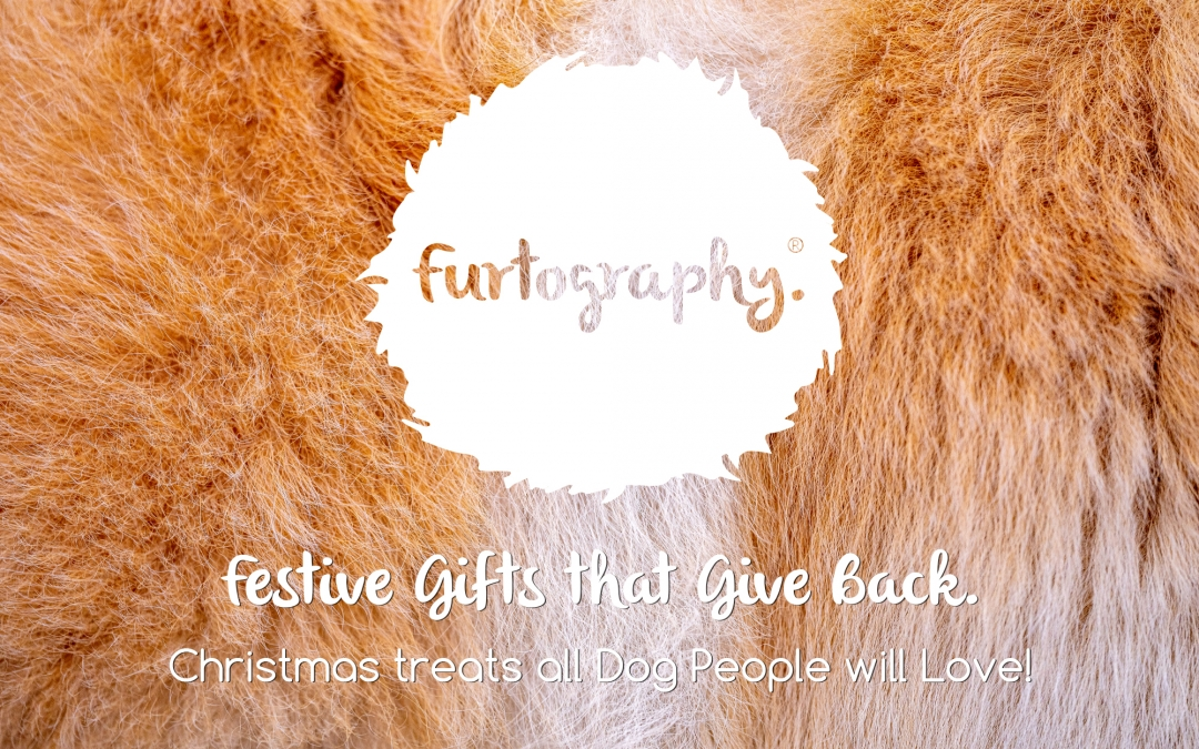 Festive Gifts That Give Back All Dog People Will Love